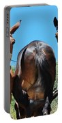 Mules On Alonissos Island Portable Battery Charger