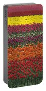Mult-colored Tulip Field Portable Battery Charger