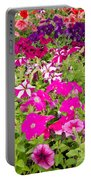 Multi-colored Blooming Petunias Background Portable Battery Charger