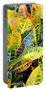 Multi-colored Croton Portable Battery Charger