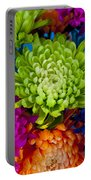 Multicolored Chrysanthemums  Portable Battery Charger