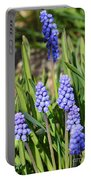 Muscari Armeniacum Portable Battery Charger
