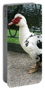 Muscovy Duck In Tivoli Gardens Portable Battery Charger