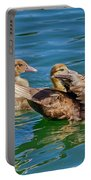 Muscovy Family Portable Battery Charger