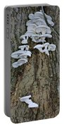 Mushroom Condo Portable Battery Charger