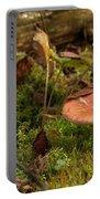 Mushroom N Moss Portable Battery Charger