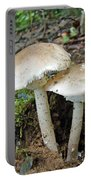 Mushroom Twins - All Grown Up Portable Battery Charger