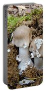 Mushroom Twins - As Youngsters Portable Battery Charger