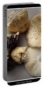 Mushrooms With Watercolor Effect 5 Portable Battery Charger