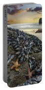 Mussel Beach Portable Battery Charger