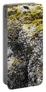 Mussels Barnacles Seaweed Closeup Portable Battery Charger