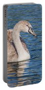 Mute Swan Cygnet Portable Battery Charger