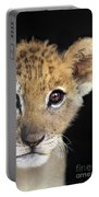 My Grandma What Big Eyes You Have African Lion Cub Wildlife Rescue Portable Battery Charger