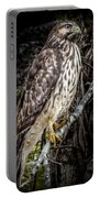 My Hawk Encounter Portable Battery Charger