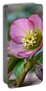 My Wild Xmas Rose Portable Battery Charger