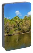 Myakka River From Jelks Preserve Portable Battery Charger