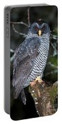 Mysterious Owl Portable Battery Charger
