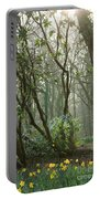 Mythical Place Portable Battery Charger