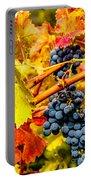 Napa Valley Grapes, California Portable Battery Charger