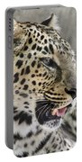 Naples Zoo - Leopard Relaxing 1 Portable Battery Charger