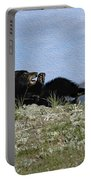 Napping Portable Battery Charger by Wildlife Fine Art