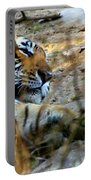 Naptime For A Bengal Tiger Portable Battery Charger