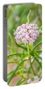 Narrowleaf Milkweed Portable Battery Charger