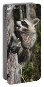 Nasty Raccoon In A Tree Portable Battery Charger
