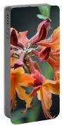 Native Flame Azalea I Portable Battery Charger