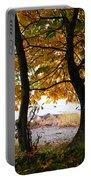 Natural Framing Portable Battery Charger