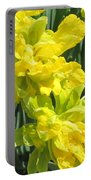 Naturalized Daffodils On The Farm Portable Battery Charger