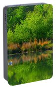 Naturally Reflected Portable Battery Charger