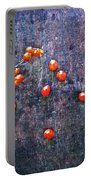 Nature Abstract 49 Portable Battery Charger
