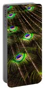 Nature Abstracts Portable Battery Charger
