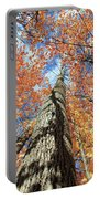 Nature In Art Portable Battery Charger