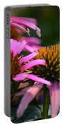 Nature Made Echinacea Portable Battery Charger