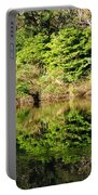 Nature Mirrored Portable Battery Charger