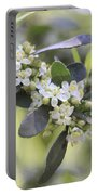 Nature Path Flower Portable Battery Charger
