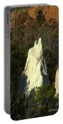 Nature Perfect Carving Portable Battery Charger