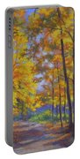 Nature Trail Turn Of Autumn Portable Battery Charger by Fiona Craig