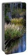 Nature Walk 2 Portable Battery Charger