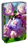 Natures Bells Portable Battery Charger