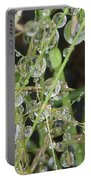 Natures Diamonds Portable Battery Charger