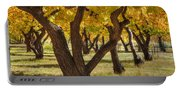 Natures Gold 2 Portable Battery Charger