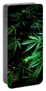 Nature's Medicine Portable Battery Charger