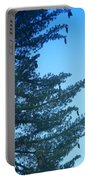 Natures Ornaments Portable Battery Charger