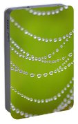 Natures Pearls  Portable Battery Charger