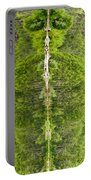 Natures Totem Portable Battery Charger