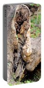 Nature's Wood Abstract Portable Battery Charger