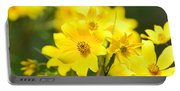 Natures Yellow Portable Battery Charger